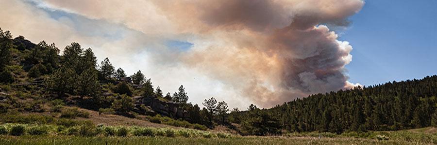 wildfire insurance in Dillon, CO