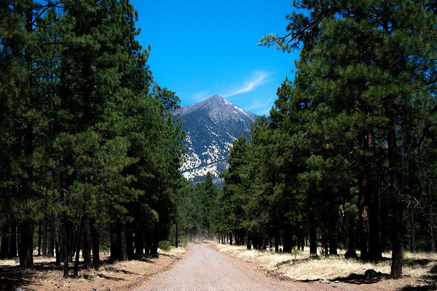 Wildfire insurance in Flagstaff, AZ