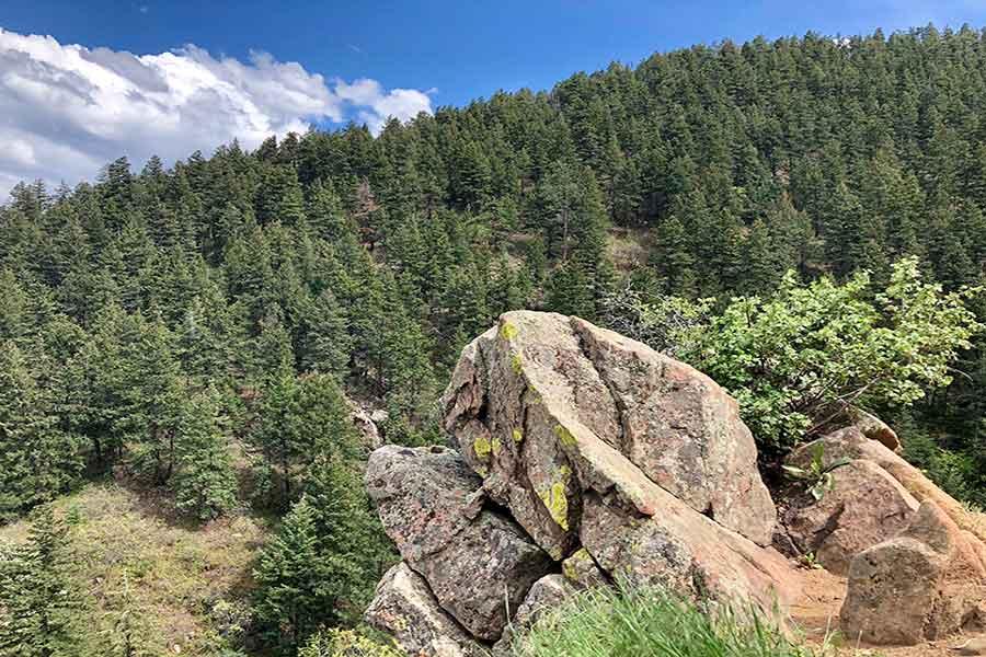 mountain insurance in Littleton, CO